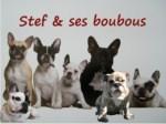 Stef & ses boubous