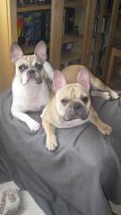 Tuc et Gaby